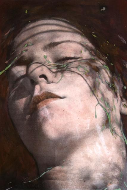 , 'Shadow #2,' 2016, Galerie Olivier Waltman | Waltman Ortega Fine Art
