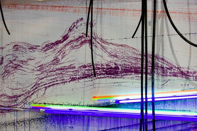 Judy Pfaff, '.....all of the above', 2007, Installation, Rice University Art Gallery