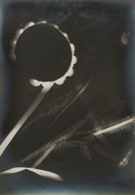 , 'Untitled (Rayograph),' 1942, Bruce Silverstein Gallery
