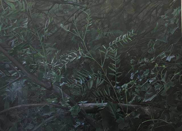 , 'Last Light,' 2017, Hill Smith Gallery