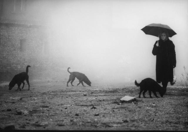 , 'Béla Tarr, Damnation (Kárhozat), 1988, courtesy Béla Tarr,' 1988, EYE Film Institute Netherlands