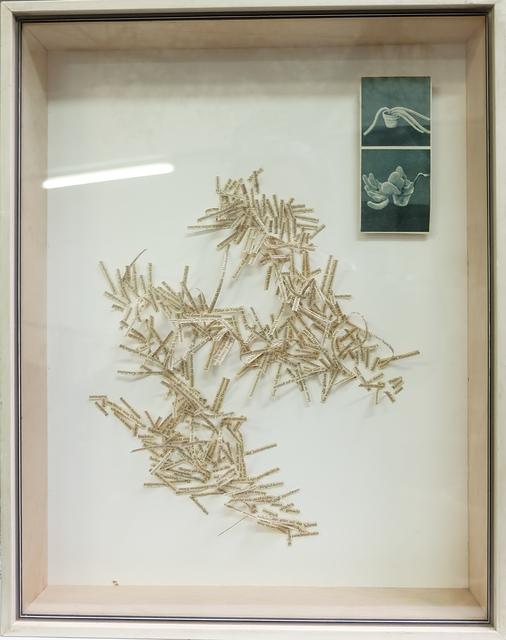 """, '""""Omnipotenzeuphorie"""" - Metaphase Chromosomen und zwei Einspalter in Holzbox,' 2015, Galerie Brigitte Schenk"""