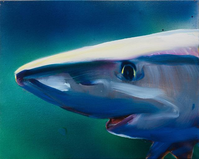 , 'Blue Shark,' 2016, Rosamund Felsen Gallery