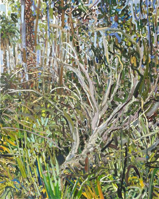 Lilian Garcia-Roig, 'Juniper and Palms', 2009, Thomas Deans Fine Art