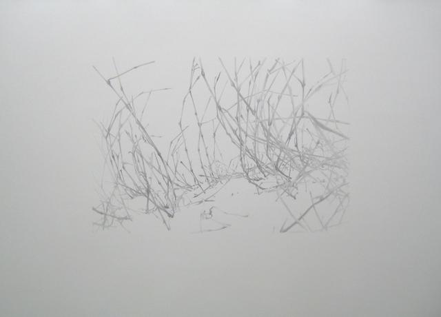 , 'Lieux de Mémoires, 34.000 Jahre Grasnarbe. Napoleonischer Russlandfeldzug, Schlacht bei Borrodino, 1812, Borodino, Zentralrussland,' 2010, Zilberman Gallery