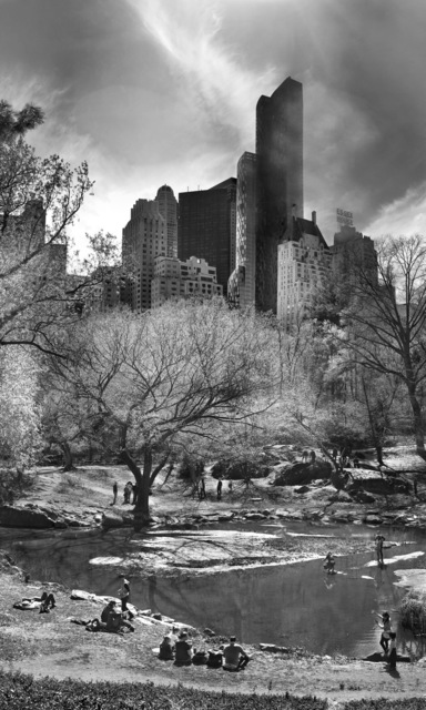 Jeff Liao, 'Central Park New York', Friends Without A Border: Live Benefit Auction 2018
