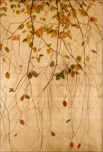 , 'Juno's Veil (Gold Version),' 2014, Gallery Henoch