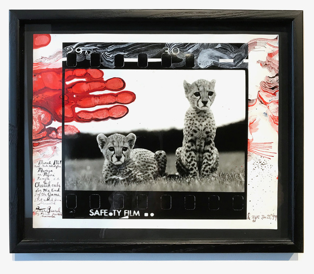 , 'Orphaned Cheetah Cubs, Mweiga National Park, Kenya for The End of the Game, 1968,' 1999, Michele Mariaud Gallery