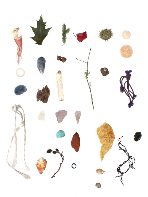 Richelle Gribble, 'Objects of Land and Sea I', 2016, Jonathan Ferrara Gallery