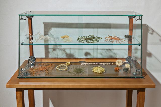 , 'Pasta vitrine,' 2013 , Galleria Continua