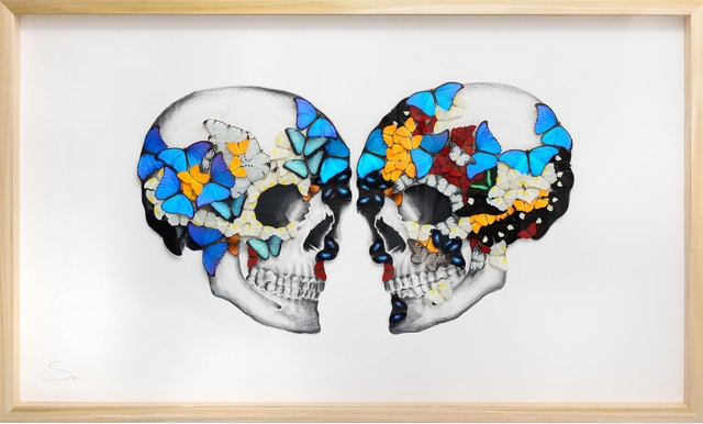 SN, 'Double Skull ', 2019, Painting, Charcoal and pencil drawing on paper with mounted butterflies., Eden Fine Art