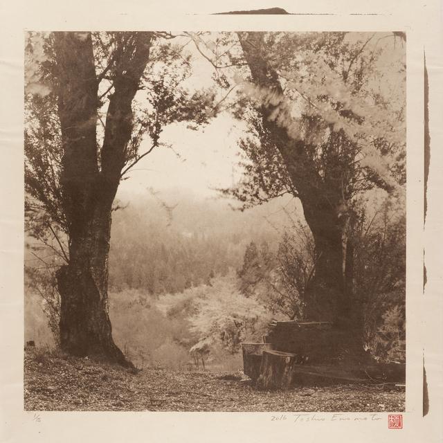 , 'Sakura mountain pass,' 2016, Micheko Galerie