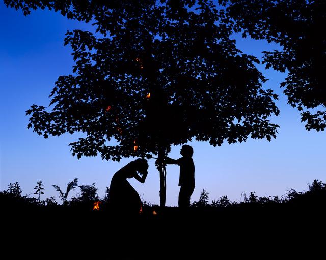 , 'As He Shook the Tree, Burning Leaves Fell on He,' 2009, ELLEPHANT