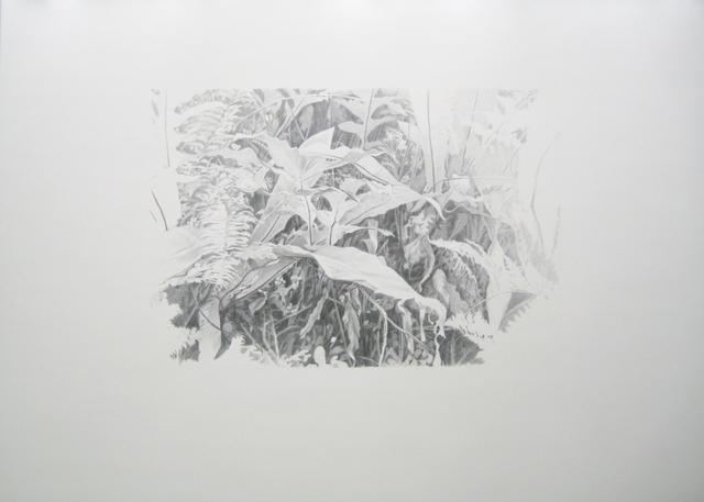 , 'Lieux de Mémoires, 34.000 Jahre Grasnarbe. Fall der ABDACON-Festung Fort Canning im Pazifikkrieg, 1942, Singapur,' 2010, Zilberman Gallery