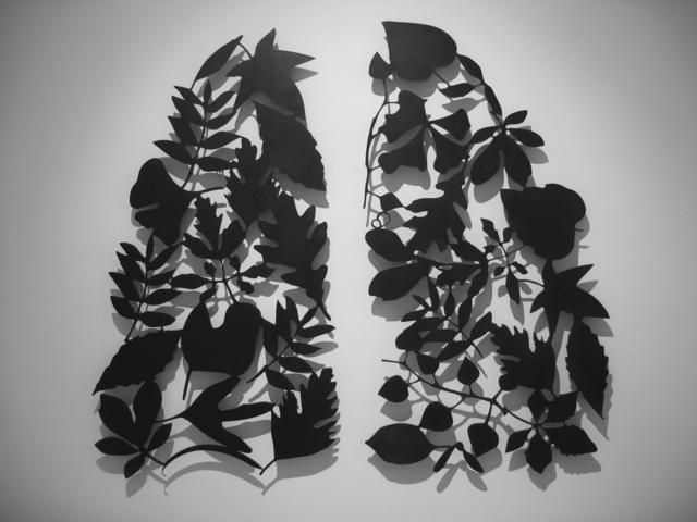 Barbara Todd, 'Leaf Lungs', 2008, Art Mûr
