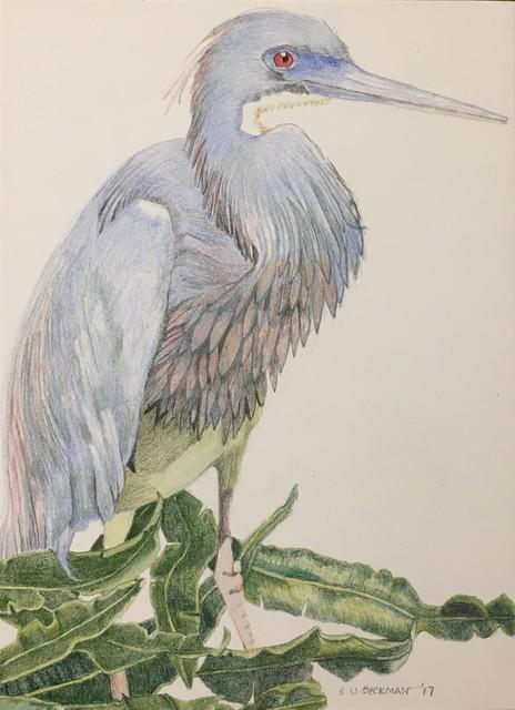 , 'Tri-Colored Heron,' 2017, Gallery Victor Armendariz