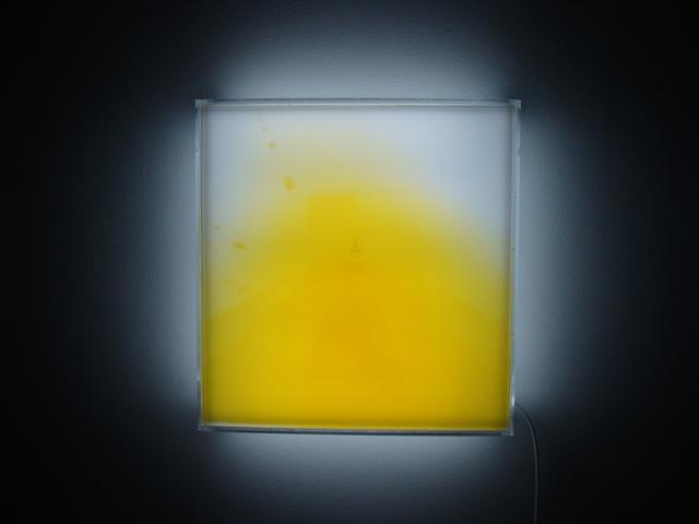 , 'Lightbox No. 3,' 2011, Galeria Lume