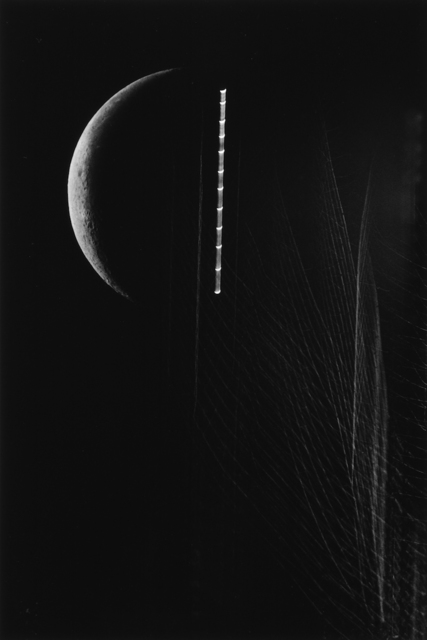 , 'A Crescent, Poplars, and Moon Trailing, Tokyo,' 1987, L. Parker Stephenson Photographs