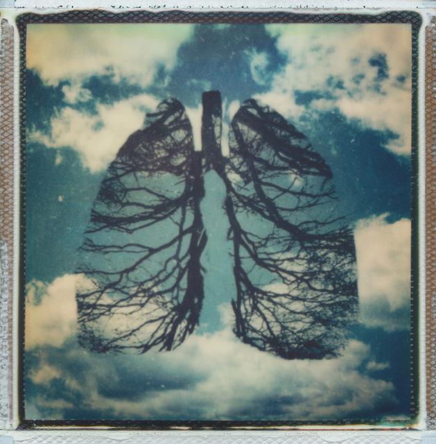 , 'Breath - Contemporary, Conceptual, Women, Polaroid, 21st Century, Nature, Future,' 2017, Instantdreams