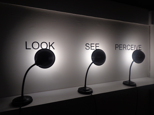 , 'Look See Perceive,' 2009, Galleria Michela Rizzo