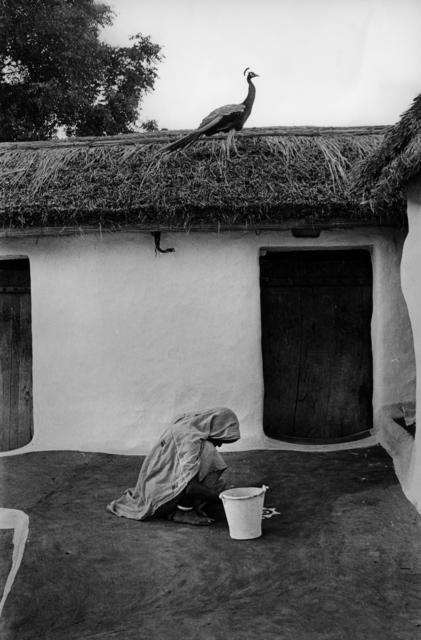 , 'Rural courtyard, Banasthali, Rajasthan,' 1972, Tasveer