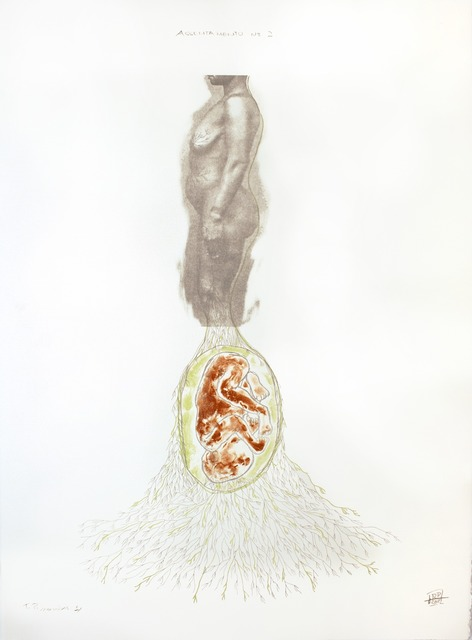 , 'Assentemento #2,' 2012, Tamarind Institute