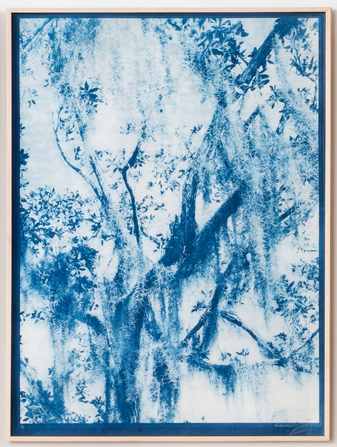 , 'Dream in Blue 1,' 2019, Litvak Contemporary