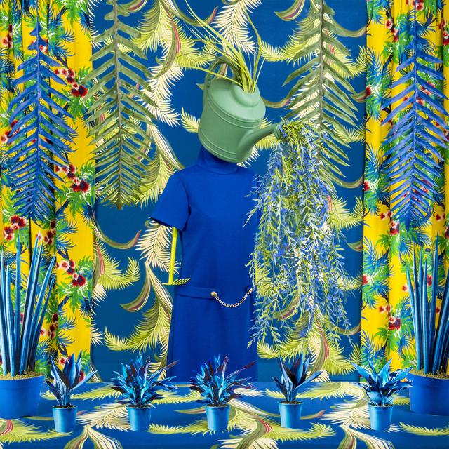Patty Carroll, 'Planty', 2015, Rubber Factory