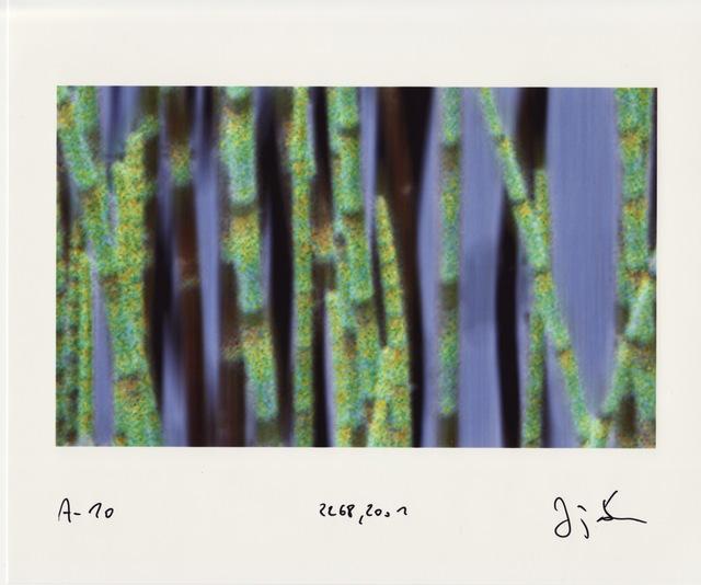 Jörg Sasse, 'Arbeiten am Bild', 2001, Aurifer AG