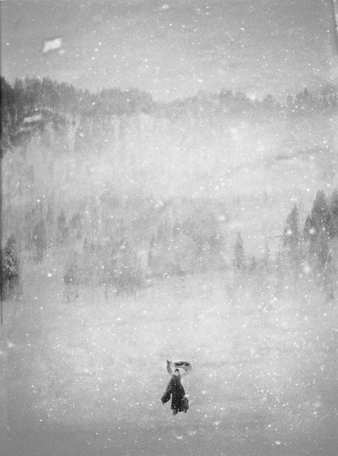 , 'In the Snow VII,' 2010, Galleria Doris Ghetta