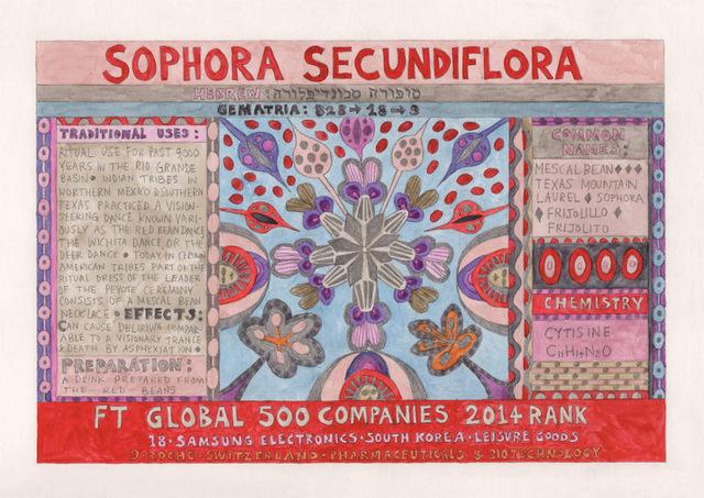 , 'HFT The Gardener/Outsider artworks/Sophora secundiflora (Mescal Bean),' 2015, P.P.O.W