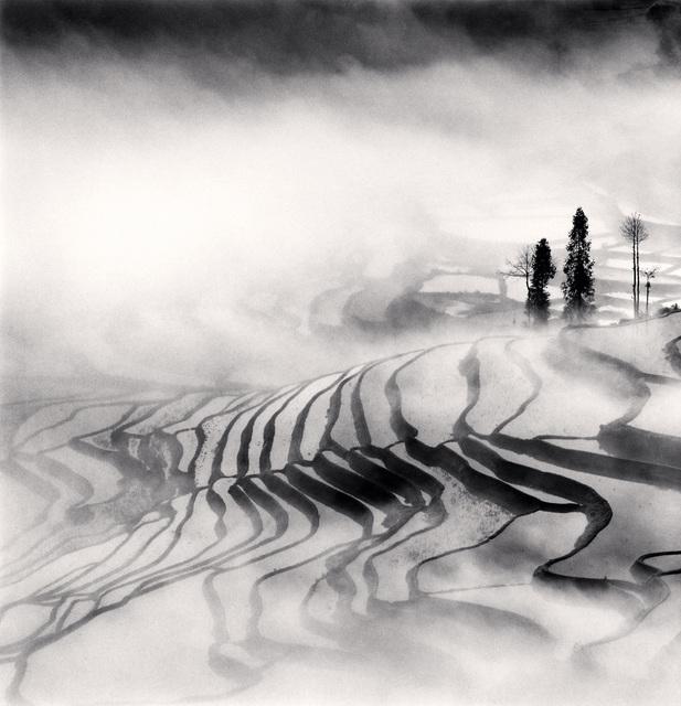 , 'Yuanyang, Study 1, Yunnan, China,' 2013, photo-eye Gallery