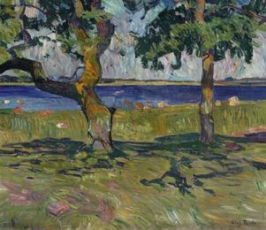 Landskab. Skejten (Landscape, Skejten)