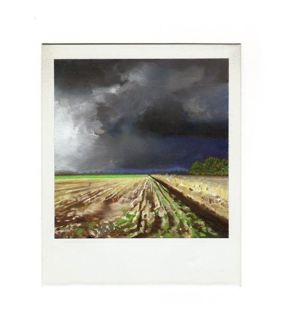 Martí Cormand, 'Farm (granja)', 2019, Josée Bienvenu