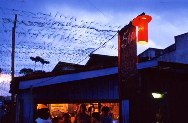 , 'Açaí Noturno,' 1987, Galeria Leme