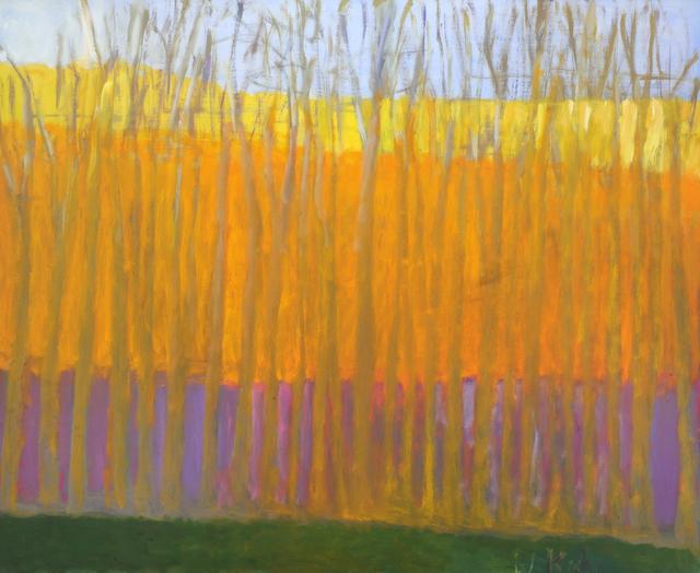 , 'Dense Tree Row,' 2005, Addison/Ripley Fine Art