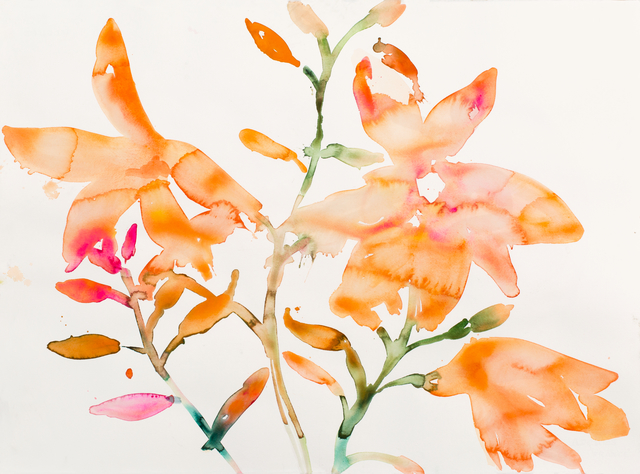 , 'Orange Flowers,' 2017, Morgan Lehman Gallery