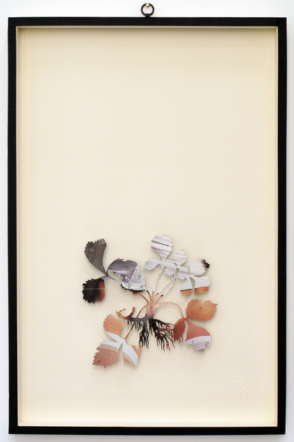 , 'You Can Learn a Lot of Things From the Flowers - Plant XXXVI,' 2011, Less is More Projects