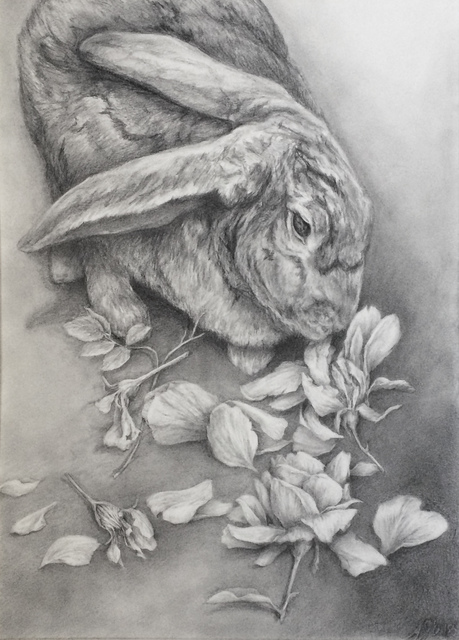 , 'Portrait of a Young Hare,' 2019, Resource Art