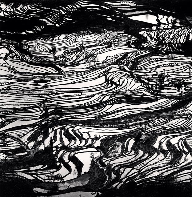 , 'Yuanyang, Study 3, Yunnan, China,' 2013, Vision Neil Folberg Gallery