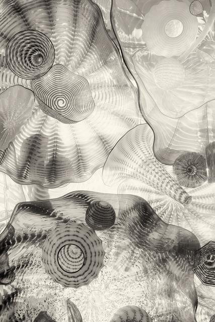 Cara Weston, 'Glass Abstractions, Washington', 2015, Photography, Digital Pigment Print, Weston Gallery