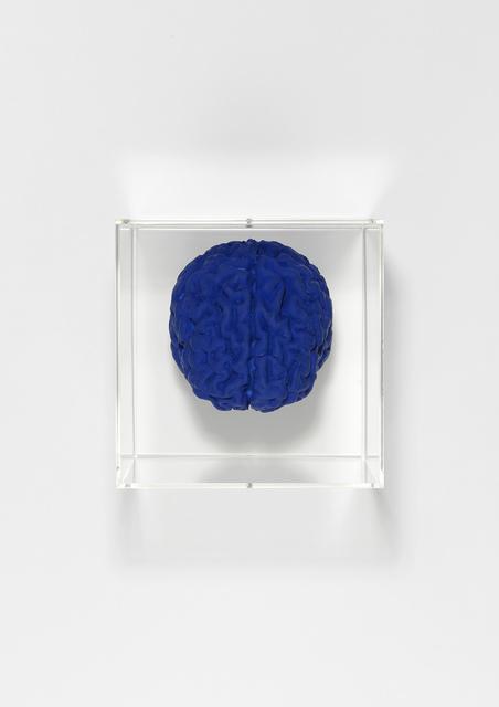 Angela Palmer, 'Brain of the artist in Yves Klein Blue', 2019, Zuleika Gallery