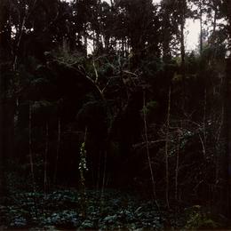 Untitled, Coimbra 2003