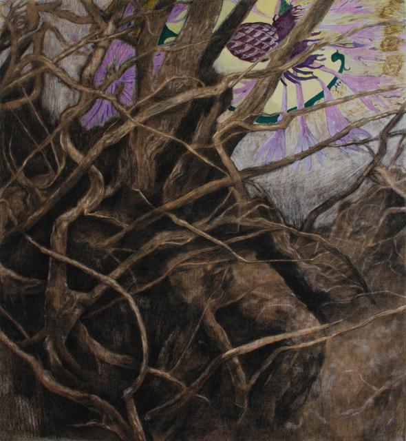 , 'Thistle,' 2016, Bugada & Cargnel