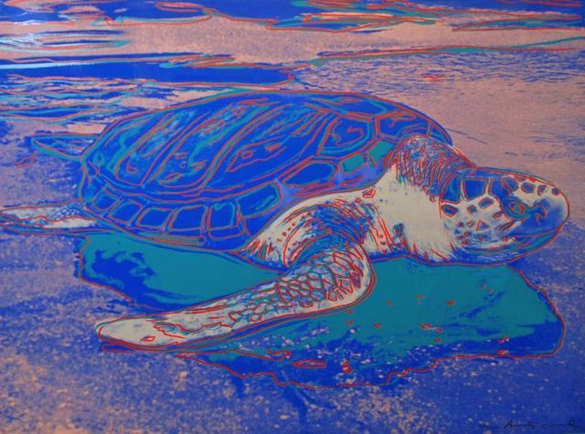 , 'Turtle  F&S ll.360A,' 1985, Vertu Fine Art