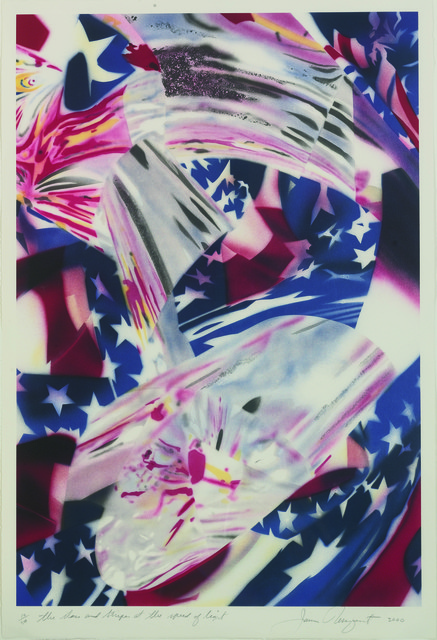 , 'The Stars  and Stripes at the Speed of Light,' 2000, Guild Hall