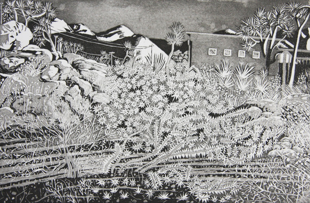 Kate Crook, 'Joshua Tree #6', 2017, Print, Lithograph, edition 50. Somerset white  paper, acid free, Asher Grey Gallery