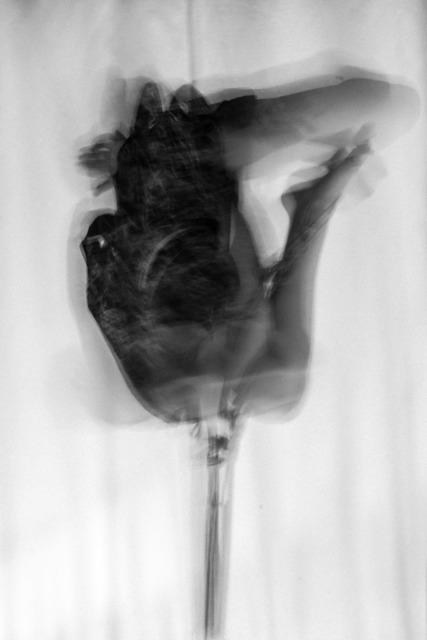 , 'Allomyrina Dichotoma 3,' 2017, The Print Atelier