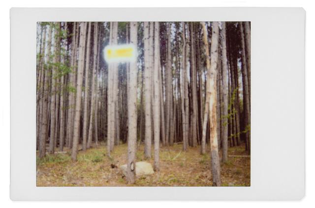 , 'Alien 5,' 2017, Robert Klein Gallery