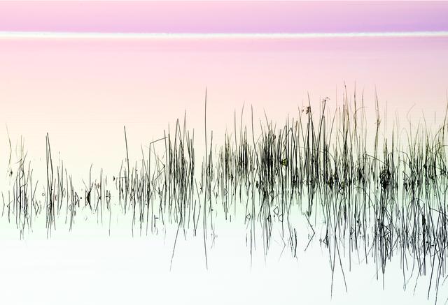 , 'Dawn,' 2014, Walter Wickiser Gallery